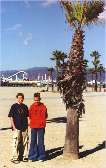 Next to a palm tree, Santa Monica Pier in the distance